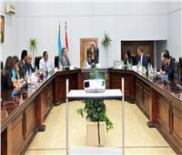 اجتماع لجنة «القصور الأثرية» بحضور وزراء التخطيط  والآثار والسياحة