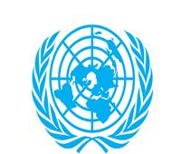 الأمم المتحدة تنفي تعيين «الفضالي» سفيرًا لمواجهة الجوع وسوء التغذية