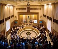 وزراء الخارجية العرب يثمنون جهود مصر لحل الأزمة الليبية