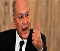 أبو الغيط: صمود العرب في مواجهة التحديات والمخاطر مستمر