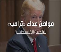 فيديوجراف| مواطن عداء «ترامب» للقضية الفلسطينية