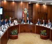 وزير قطاع الأعمال يبحث مع وزيري الكهرباء والبترول تسوية المديونيات المتراكمة