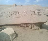 صور وفيديو| «صان الحجر» آثار ملقاة على الأرض.. لكل حجر تاريخ