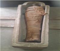 العثور على «تابوت حجري» بداخله مومياء بالبر الغربي بأسوان