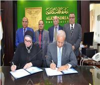 تعاون بين جامعة الإسكندرية و«تنمية المشروعات» لتأهيل الطلاب على ريادة الأعمال