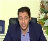 أحمد خيري: يوجد 34 مدرسة يابانية في مصر