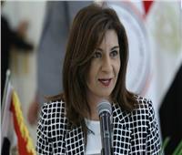 وزير الخارجية الأرمني يزور مصر.. الأسبوع المقبل