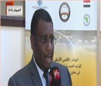 الأمم المتحدة: مصر تلعب دورًا مهما في مكافحة الاتجار بالبشر
