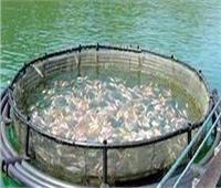 منظومة متكاملة للاستزراع السمكي بجامعة العريش