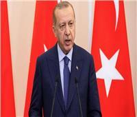 أردوغان يسعى لتعزيز الروابط الاقتصادية والسياسية مع ألمانيا