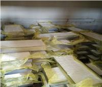 «مسطحات القليوبية» تضبط مصنعين لإنتاج الجبن والحلويات «مجهولة المصدر»