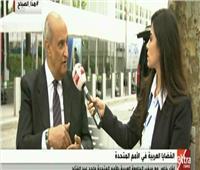 سفير الجامعة العربية: مصر قادرة على تنفيذ أي أمر يتم الاتفاق عليه