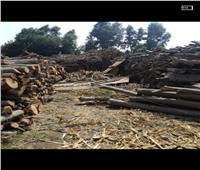 «البيئة» تشن حملات تفتيش على مكامير الفحم بالمنوفية