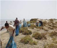 حملة نظافة بـ«وادي الجمال» للتوعية بأهمية المحميات الطبيعية