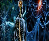 دراسة| المدخنون أكثر عرضة للإصابة بالتصلب العصبي المتعدد
