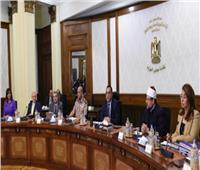حقيقة فتح الحكومة باب التعاقدات بالجهاز الإداري للدولة أكتوبر المقبل