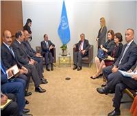 الرئيس السيسي يؤكد دعم جهود الأمم المتحدة فى تحقيق السلم والأمن الدوليين
