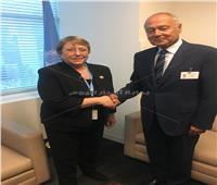 أبو الغيط يلتقي  المفوضة السامية للأمم المتحدة لحقوق الإنسان