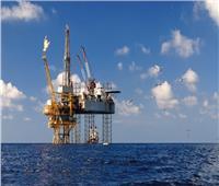 «البترول»: نرحب ببيان «نوبل أنرجي» بشأن تصدير الغاز لمصر