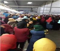 انتظام 3500 عامل بشركة استثمارية بالإسماعيلية في العمل بعد صرف بدل غلاء المعيشة