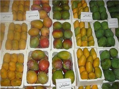 أسعار المانجو في سوق العبور الخميس 4 أكتوبر