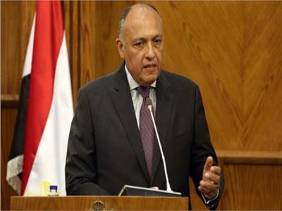 شكري يستعرض «برنامج الإصلاح الاقتصادي» أمام «مجلس الأعمال الياباني المصري»