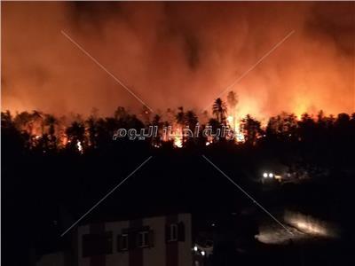 محافظ الوادي الجديد: الرئاسة تتابع عن كثب حريق قرية الراشدة| فيديو الحريق