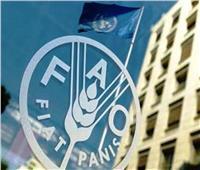 «الفاو» و«البنك الإسلامي» ينظمان ورشة عمل لمناقشة مستقبل الزراعة اليوم