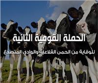 فيديوجراف   الحملة القومية الثانية للوقاية من الحمى القلاعية والوادي المتصدع
