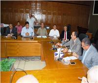 شوشة: لا قيود على إدخال مواد البناء إلى سيناء