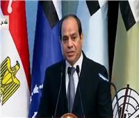 فيديو| السيسي: مصر لم تفقد الإرادة مهما واجهت من صعاب