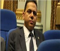 برلماني يوضح سبل مواجهة ارتفاع أسعار الدواجن بعد قانون التداول