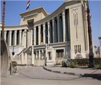الدستورية ترفض مادة التجنيد في قانون المحاماة