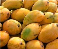 أسعار المانجو في سوق العبور الأحد 14 أكتوبر