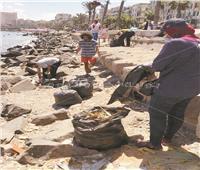 بالصور| 3 شباب في مهمة لإسعاف شوارع القاهرة والإسكندرية