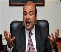 «خالد حنفي» يدعو لإقامة شراكة وتحالف إستراتيجي بين الدول العربية وإيطاليا