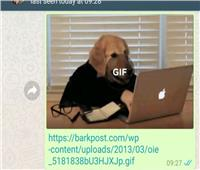 الواتساب يتيح تحميل ملفات GIF قبل إرسالها