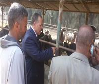 سكرتير مساعد أسيوط يتفقد مزرعة الثروة الحيوانية بمنفلوط