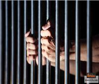 السجن المشدد 15 عامًا لخلية الشرقية الإرهابية