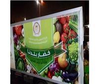 مفاجأة.. «التموين» تطرح خضر وفاكهة بأسعار تنافسية