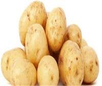 المجلس القومي للتنمية الزراعية يُحذر من وصول «البطاطس» لـ 40 جنيها