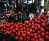 فيديو| «التموين» تكشف أسباب ارتفاع سعر البطاطس والطماطم