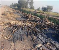 صور| السحابة السوداء تغطي أسيوط بسبب حرق «البوص»