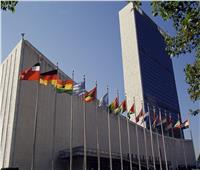 الجمعية المصرية لـ«الأمم المتحدة» تحتفل بيوم المنظمة الدولية