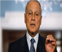 أبو الغيط يعزي العاهل الأردني في ضحايا السيول