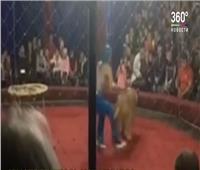 شاهد..أسد يهجم على طفلة خلال عرض سيرك