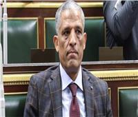 برلماني: «هيبة الدولة لازم تطبق على المحاجر»