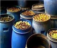 ضبط 700 طن مخللات ومستلزمات إنتاج غير صالحة للاستهلاك بالجيزة