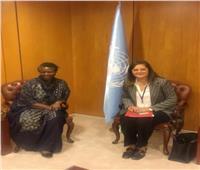 الأمم المتحدة: نقدر جهود مصر في قضايا السكان والتنمية