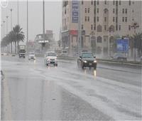 فيديو| الأرصاد تكشف موعد سقوط أمطار غزيرة على القاهرة
